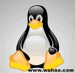 解决burst VPS Kloxo面板WordPress更新插件需要FTP密码(linux)